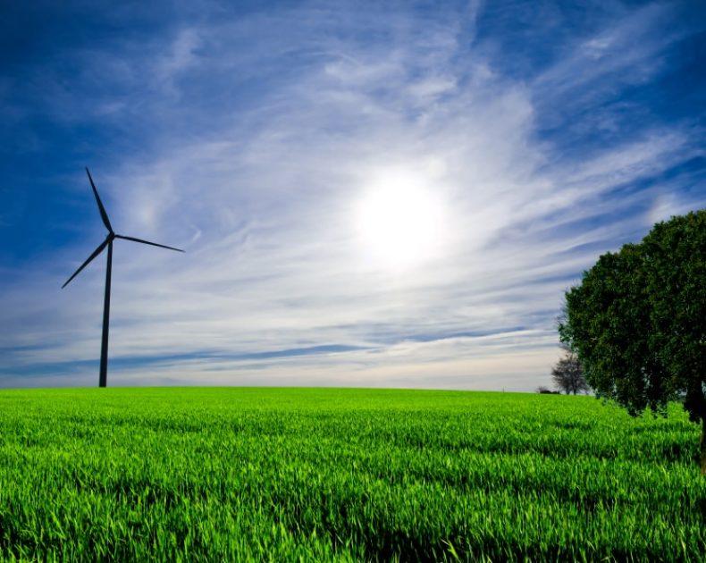 Green Economy tutto quello che c'è da sapere